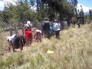 Kiria Primary parents organize themselves to finish the fence after the team leaves...